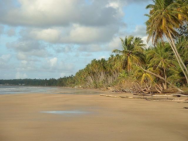 640px-Mayaro_Beach;_Trinidad_&_Tobago